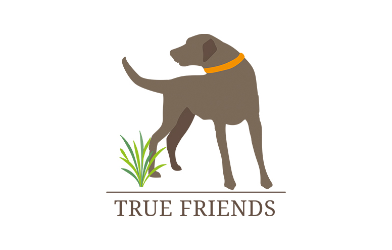 Logo True Friends