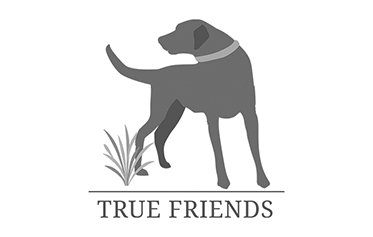 Logo von True Friends
